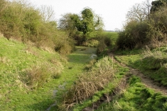 The Motte, Brinklow : Spring-2000 : photo Duncan Bean